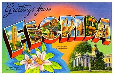 Greetings from Florida by Amazon