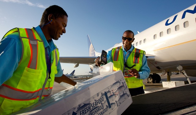 united-cargo-increases-revenue